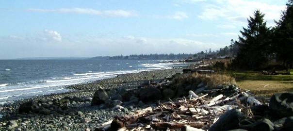 Campbell River Beach